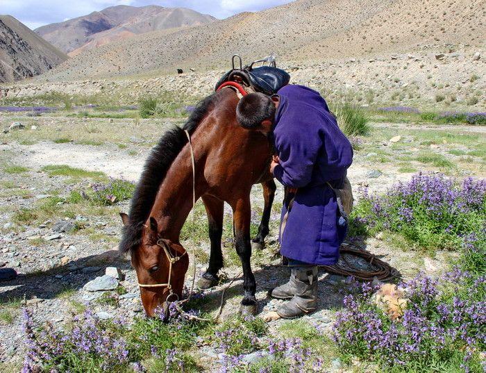 http://www.azimut59.ru/images/mongolia_7_43.jpg